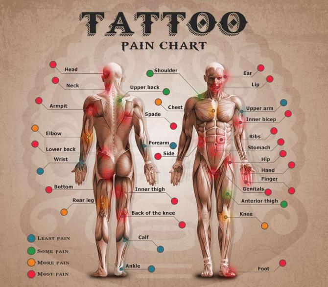 Qué Tanto Dolor Sentirás Al Realizarte Un Tatuaje Noticias De